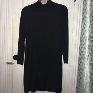 Long Sleeve Sweater Dress w/Silver earrings
